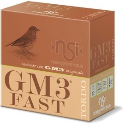 GM3 FAST TORDO 32/12/2
